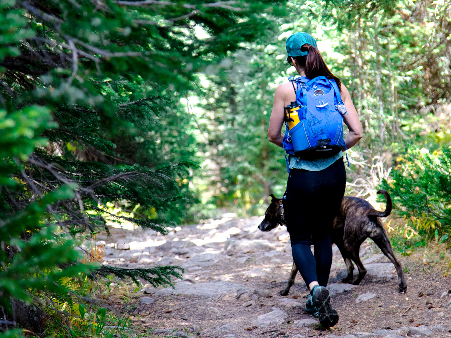 Woman walking with dog in forest