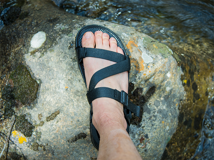 Chaco Lowdown Sandal